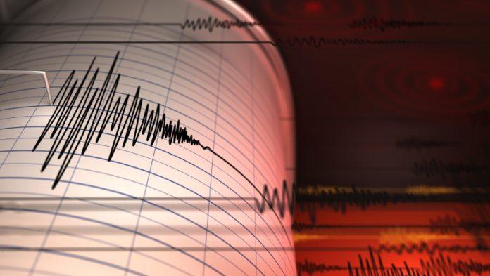Vrâncioaia s-a cutremurat aseară! 4,5 pe Richer a avut cutremurul