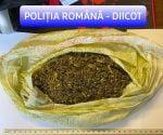 vasluian,droguri,DIICOT,Poliția Română