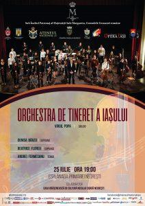 Concert, Negrești