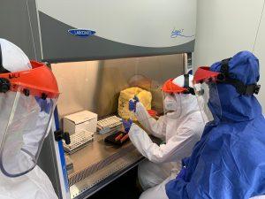 Test PCR, Bârlad